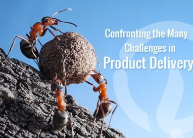 Confronting the Many Challenges in Product Delivery